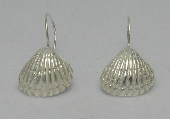 Silver earrings - E000001