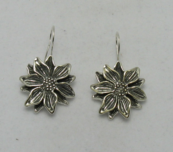 Silver earrings - E000010