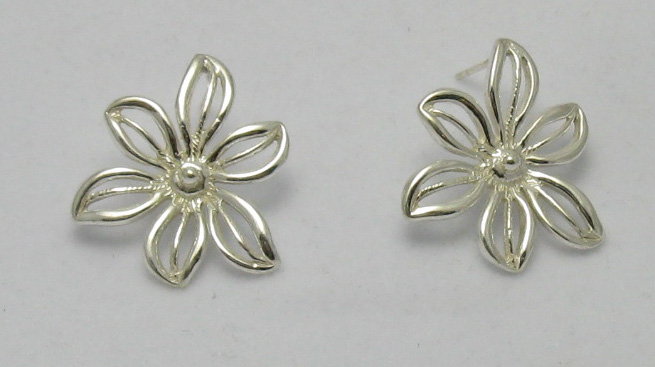 Silver earrings - E000149