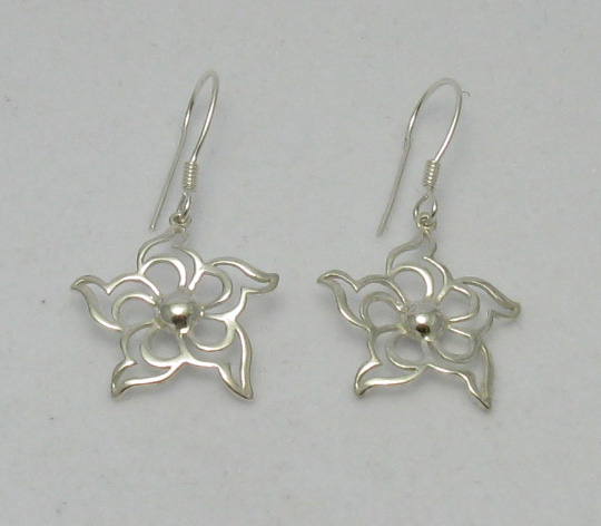Silver earrings - E000160