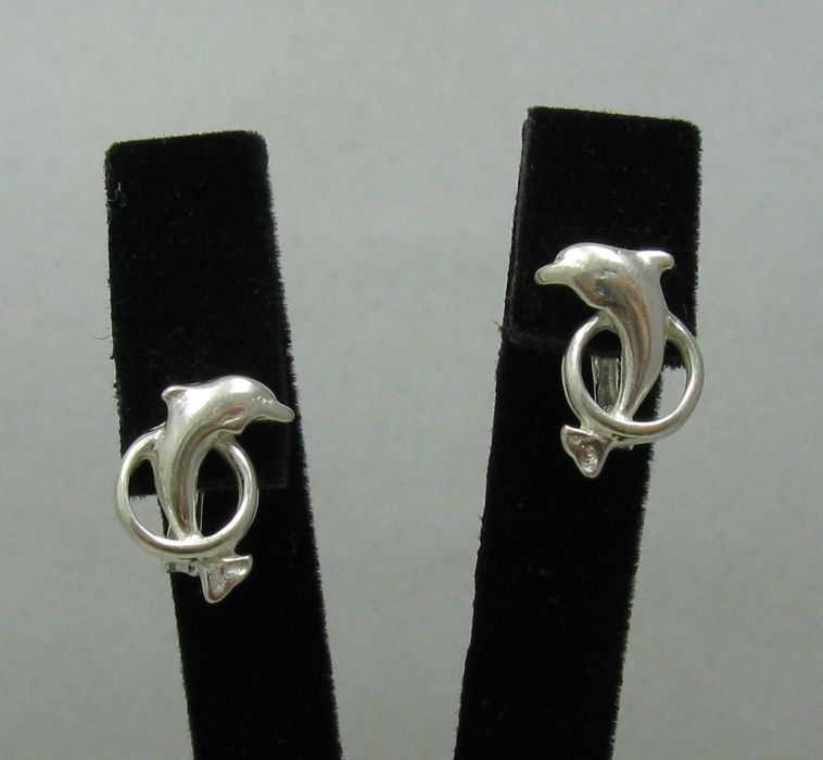 Silver earrings - E000426