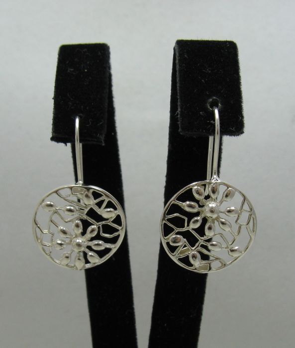 Silver earrings - E000437