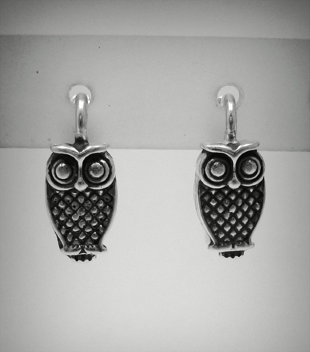 Silver earrings - E000469