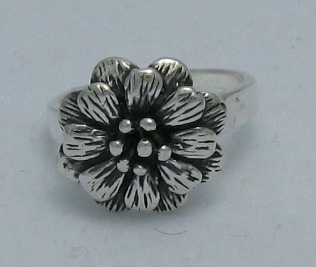 Silver ring - R000303